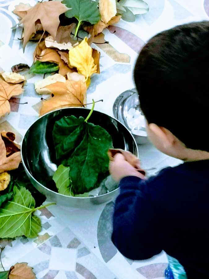 Instalación de otoño en la escuela infantil