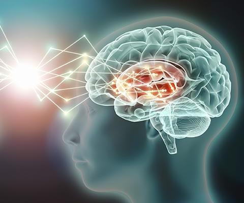 Cómo mejorar el desarrollo cerebral de los niños y niñas