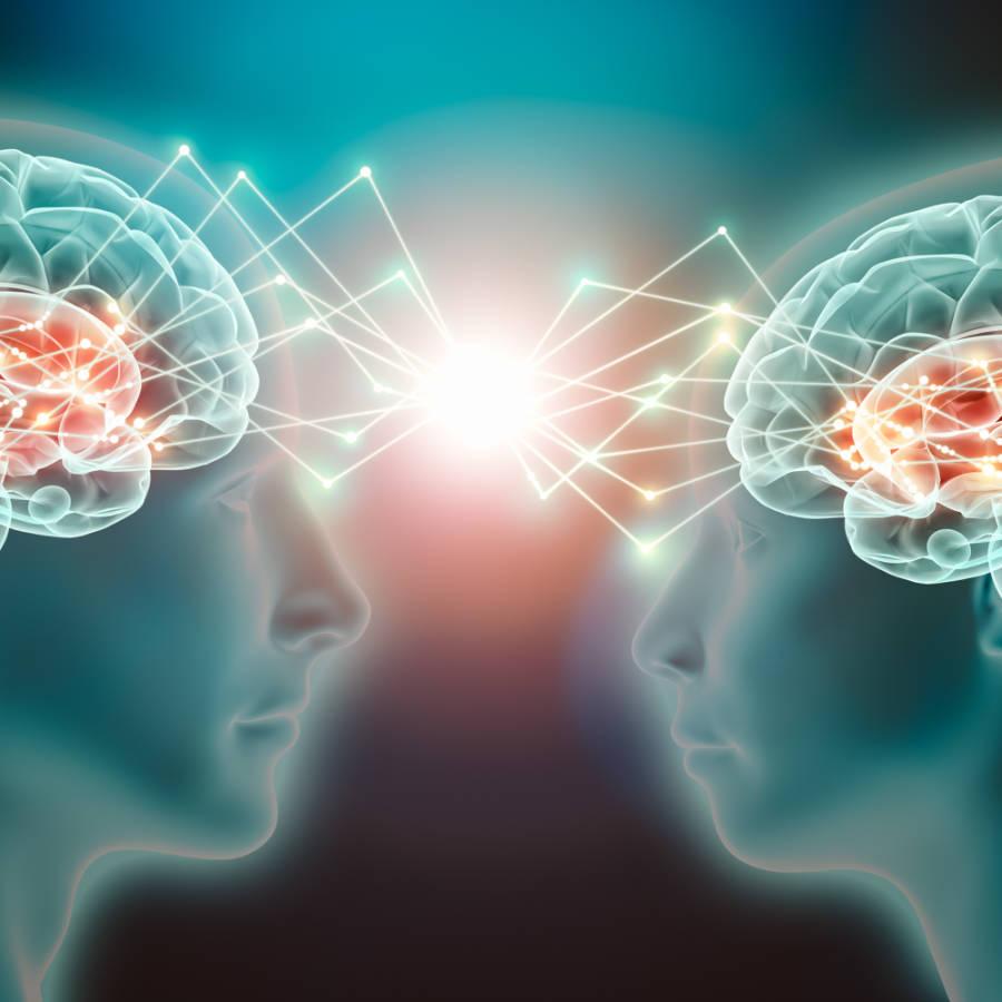 Cómo trabajamos la neurociencia educativa - Las neuronas espejo como base del aprendizajea